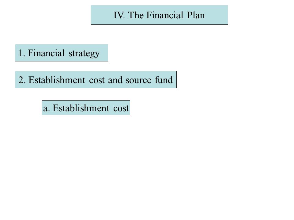 IV. The Financial Plan 1. Financial strategy 2. Establishment cost and source fund a.