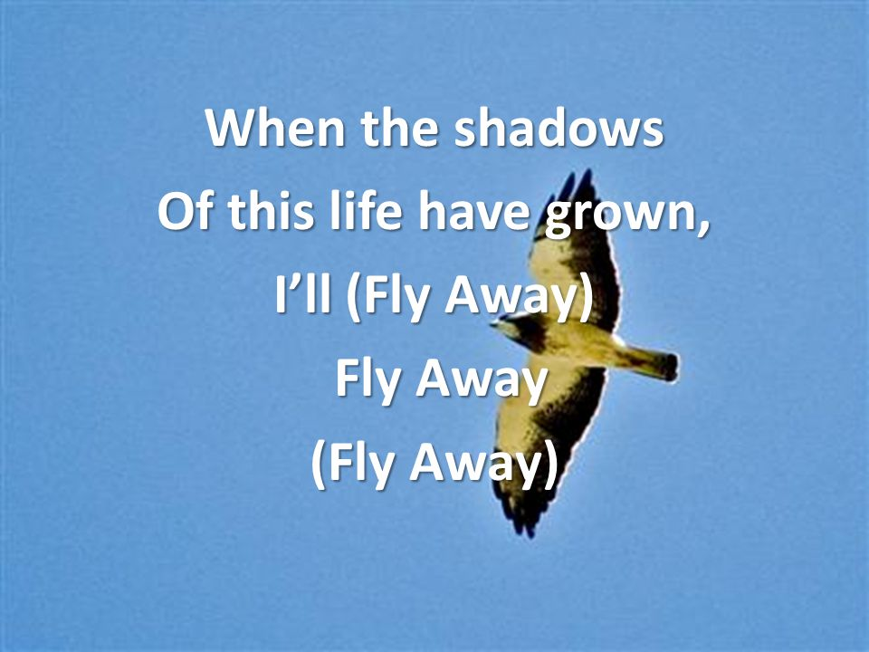 When the shadows Of this life have grown, I'll (Fly Away) Fly Away Fly Away (Fly Away)