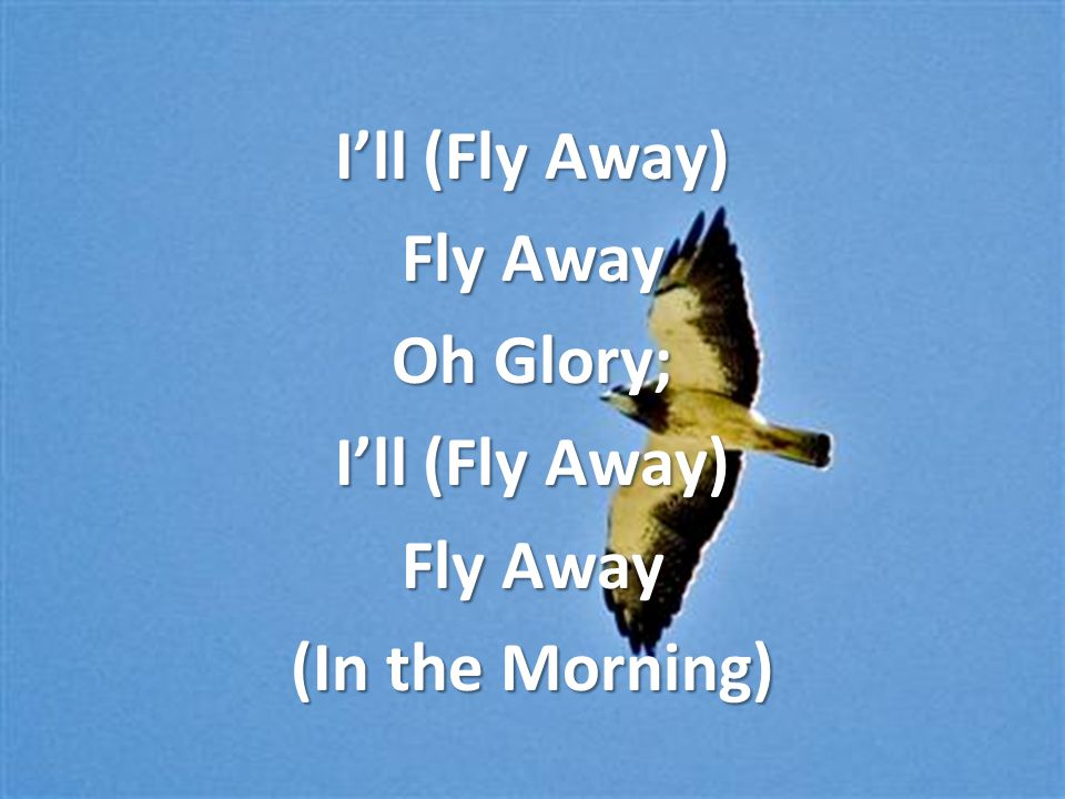 I'll (Fly Away) Fly Away Oh Glory; I'll (Fly Away) Fly Away (In the Morning)