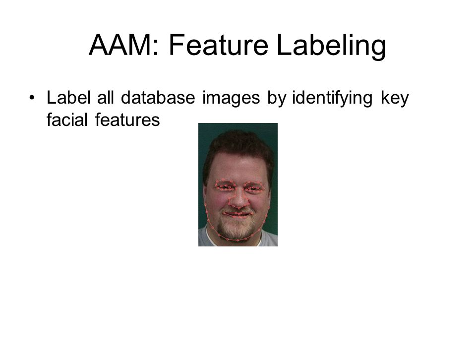 AAM: Feature Labeling Label all database images by identifying key facial features