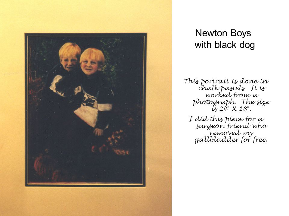 Newton Boys with black dog This portrait is done in chalk pastels.