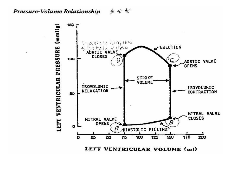 Left Ventricular Pressure-Volume Loops Chronic Aortic Stenosis Chronic Aortic Stenosis (increased afterload) – Concentric hypertrophy permits the LV to generate greater pressure – LV volumes remain about normal – P-V loop shifts upward