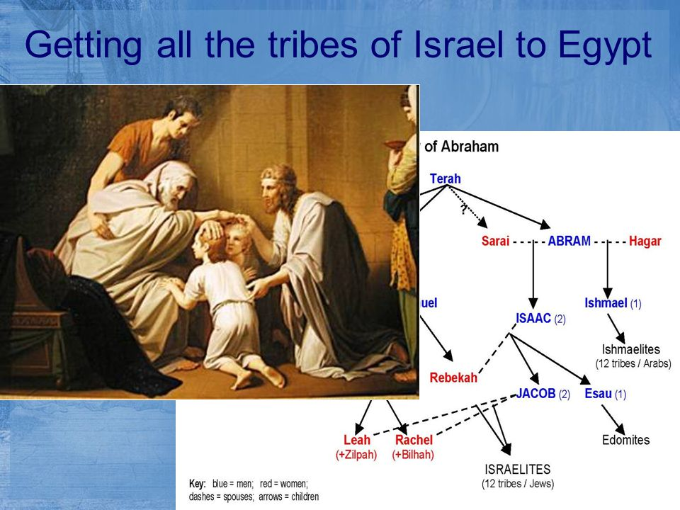 Getting all the tribes of Israel to Egypt