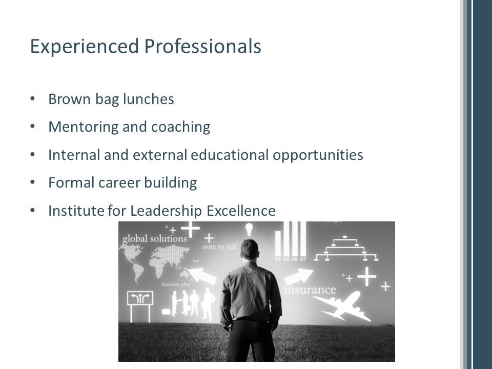 Experienced Professionals Brown bag lunches Mentoring and coaching Internal and external educational opportunities Formal career building Institute for Leadership Excellence