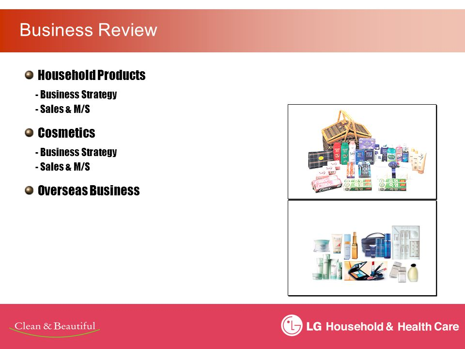 Household Products - Business Strategy - Sales & M/S Cosmetics - Business Strategy - Sales & M/S Overseas Business Business Review
