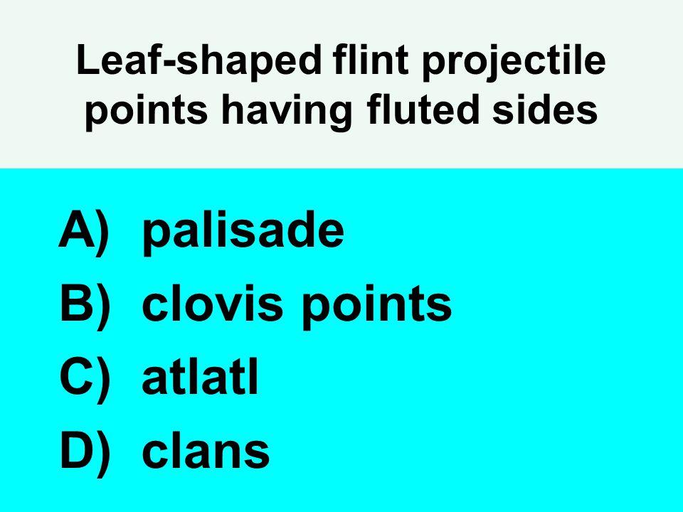 Leaf-shaped flint projectile points having fluted sides A) palisade B) clovis points C) atlatl D) clans