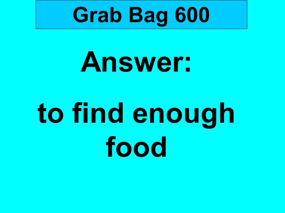 Grab Bag 600 Answer: to find enough food
