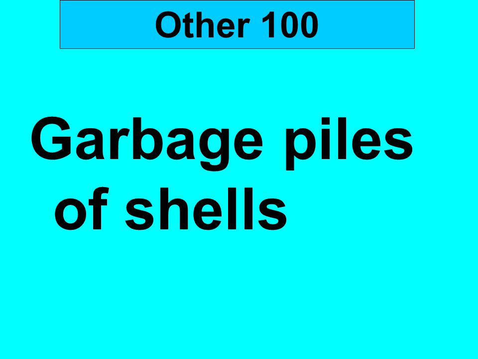 Other 100 Garbage piles of shells