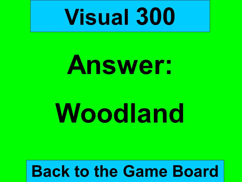 Visual 300 Answer: Woodland Back to the Game Board