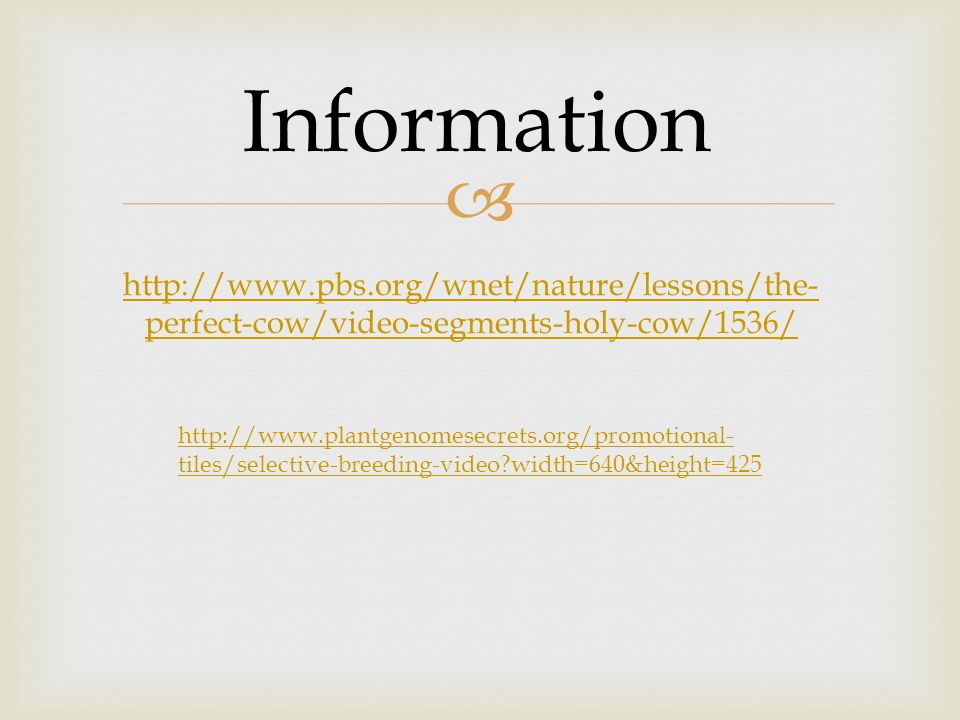  http://www.pbs.org/wnet/nature/lessons/the- perfect-cow/video-segments-holy-cow/1536/ http://www.plantgenomesecrets.org/promotional- tiles/selective-breeding-video width=640&height=425 Information