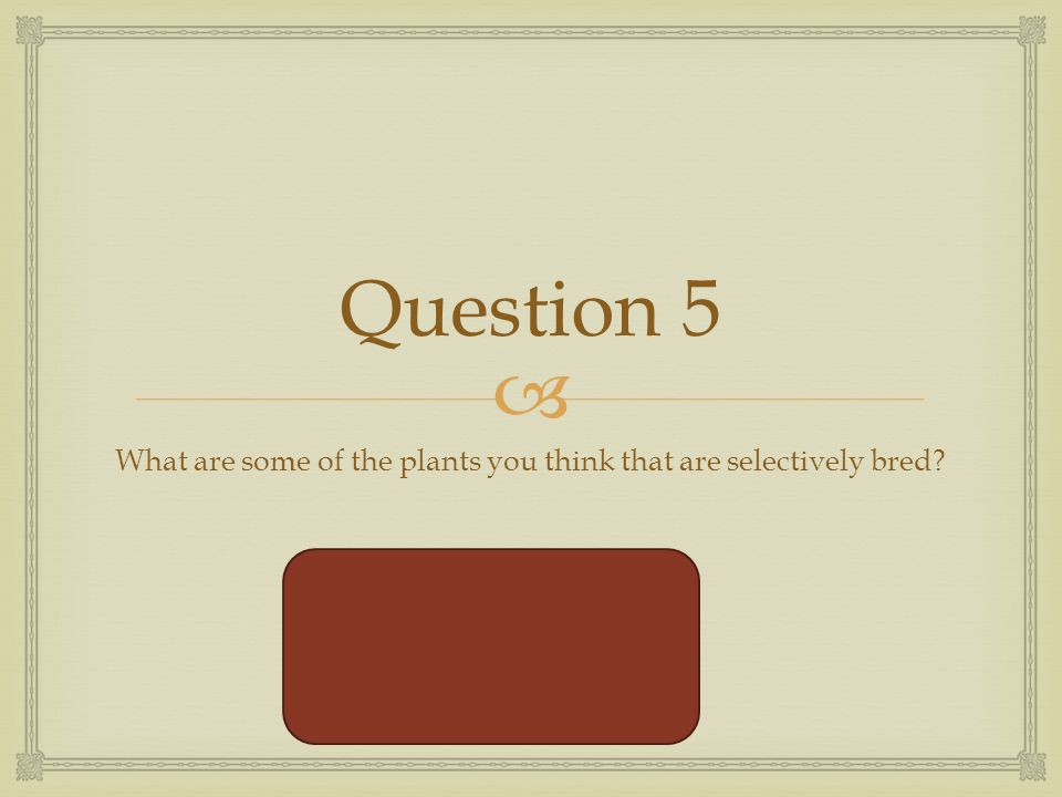  Question 5 What are some of the plants you think that are selectively bred.