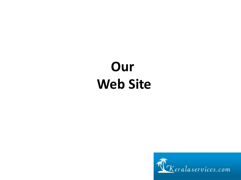 Our Web Site