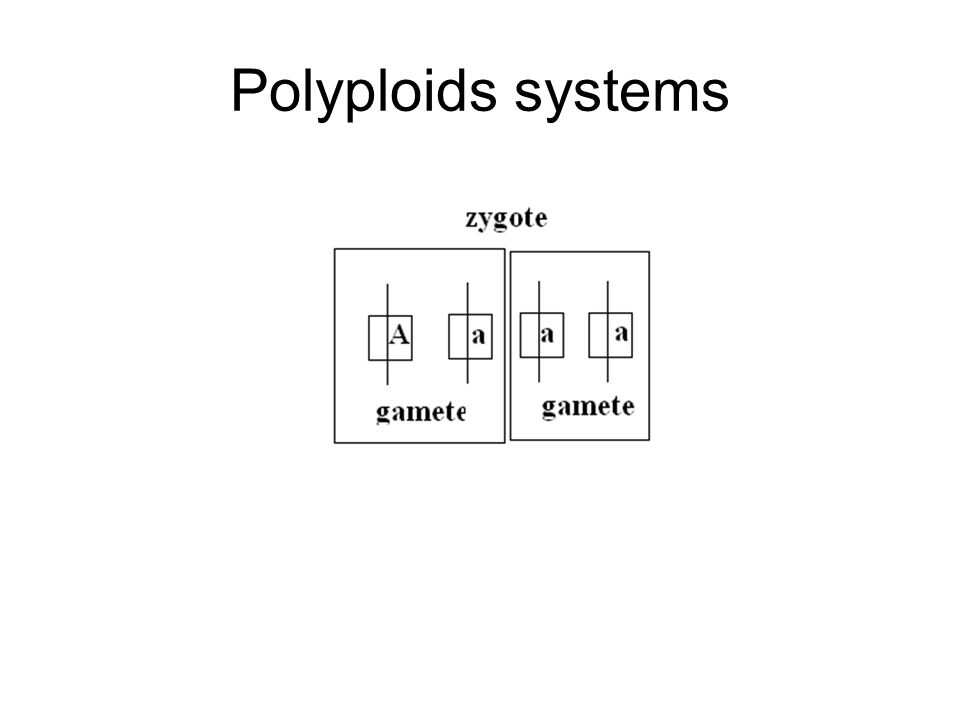 Polyploids systems