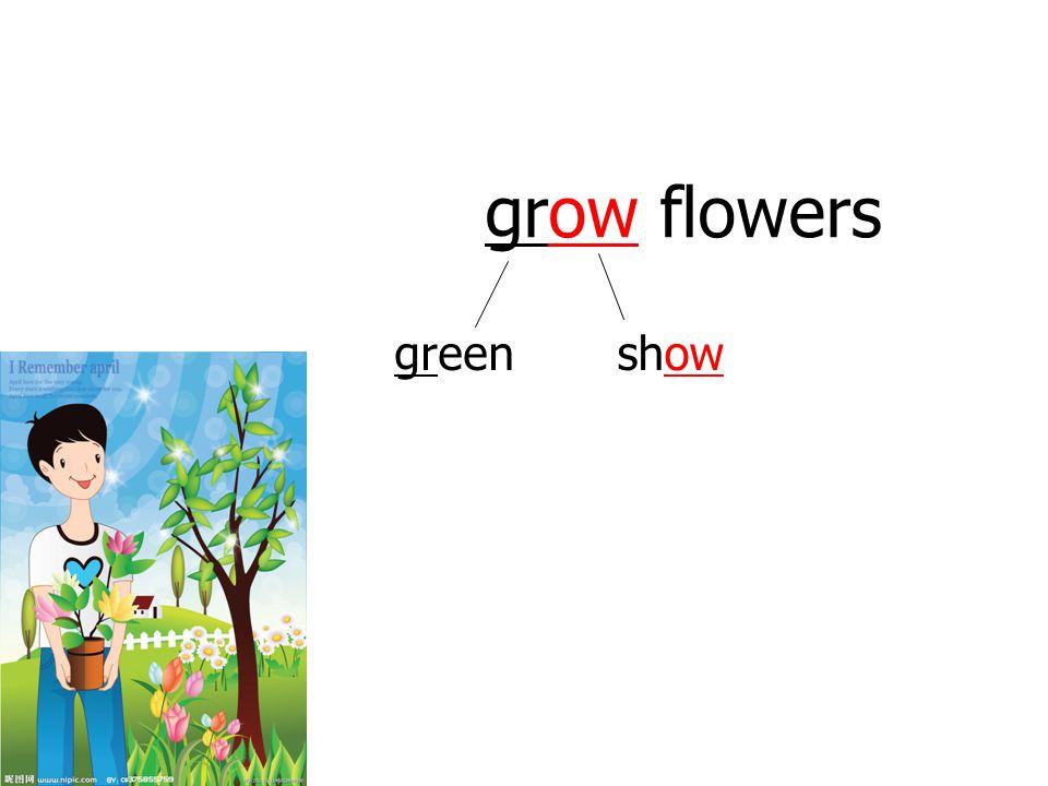 grow flowers greenshow