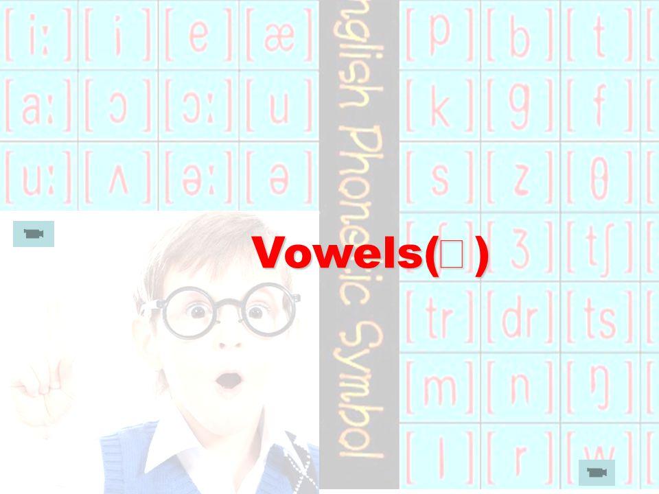 Vowels( Ⅲ ) Vowels( Ⅲ )