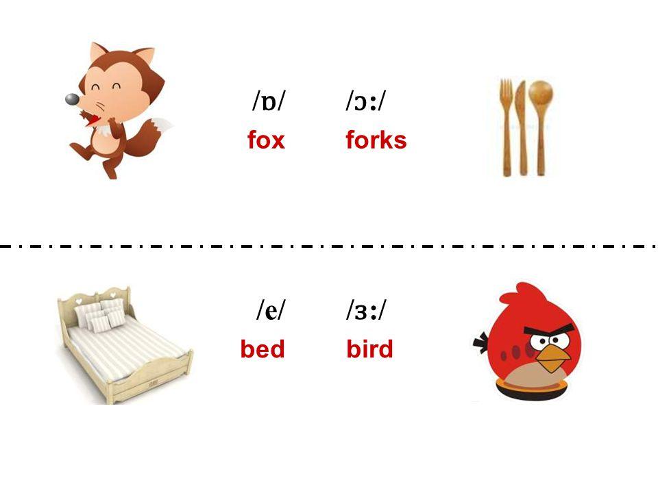 /ɒ//ɒ// ɔ :/ foxforks /e/ / ɜ :/ bedbird