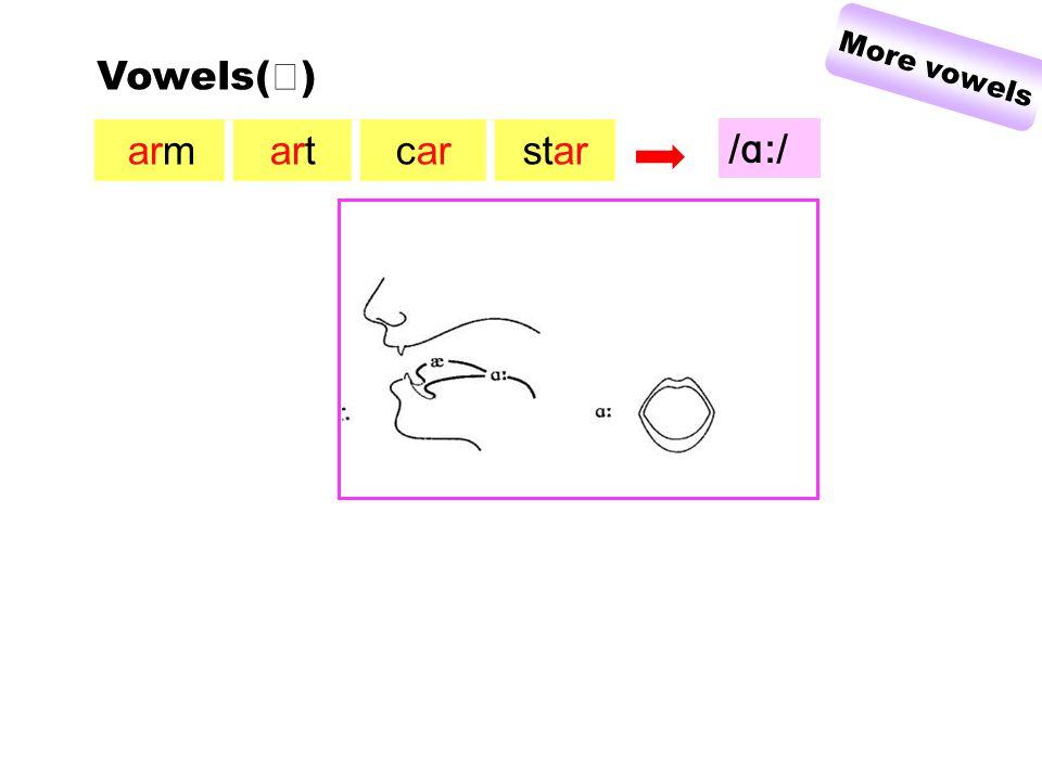 armartcarstar Vowels( Ⅲ ) More vowels / ɑ :/