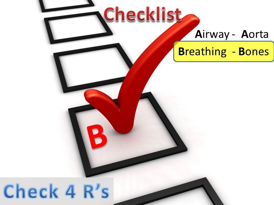 Airway - Aorta Breathing - Bones B