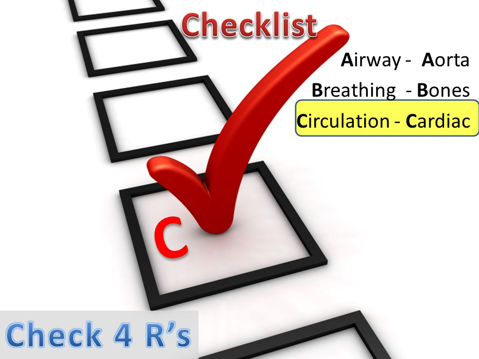Airway - Aorta Breathing - Bones Circulation - Cardiac C