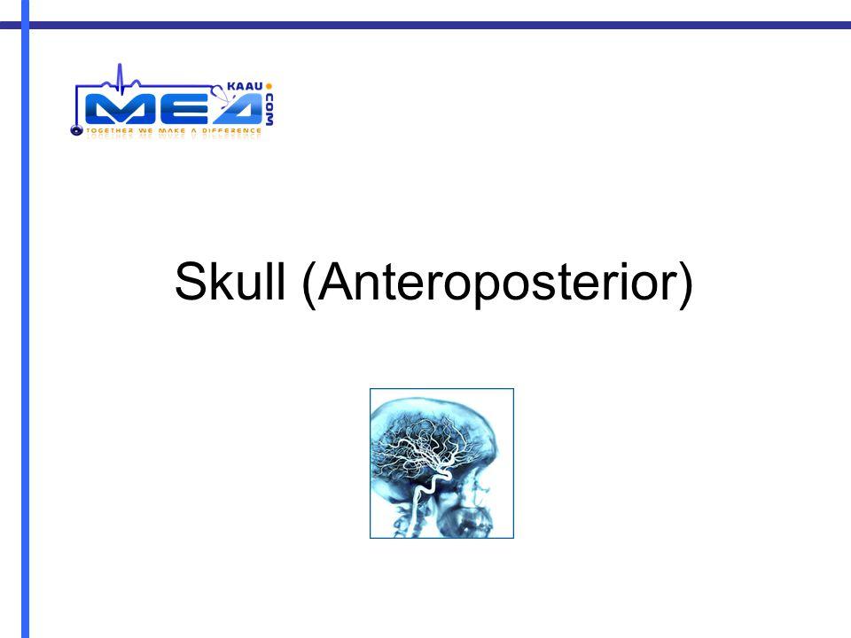 Skull (Anteroposterior)