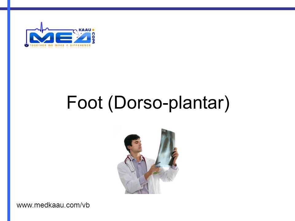 Foot (Dorso-plantar) www.medkaau.com/vb
