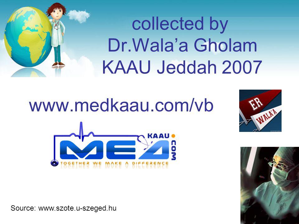 collected by Dr.Wala'a Gholam KAAU Jeddah 2007 www.medkaau.com/vb Source: www.szote.u-szeged.hu