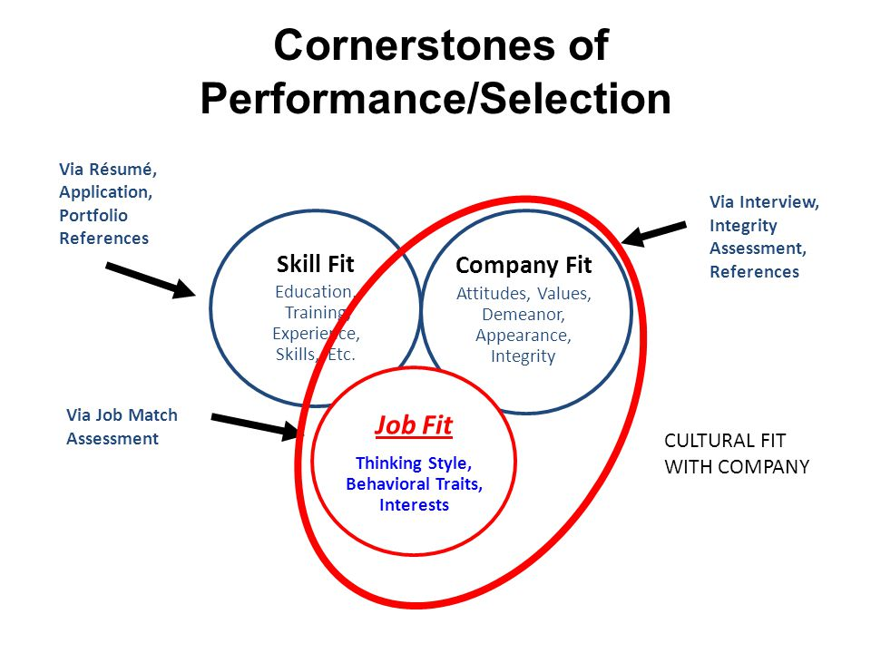 Cornerstones of Performance/Selection Skill Fit Education, Training, Experience, Skills, Etc.