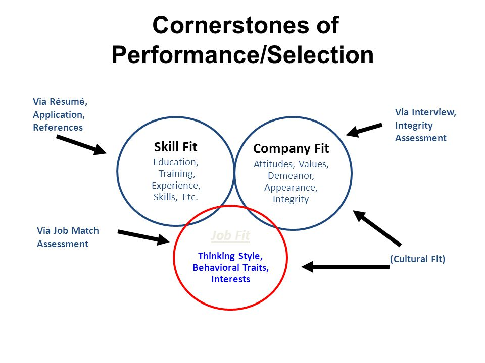 Cornerstones of Performance/Selection Skill Fit Education, Training, Experience, Skills, Etc. Company Fit Attitudes, Values, Demeanor, Appearance, Int