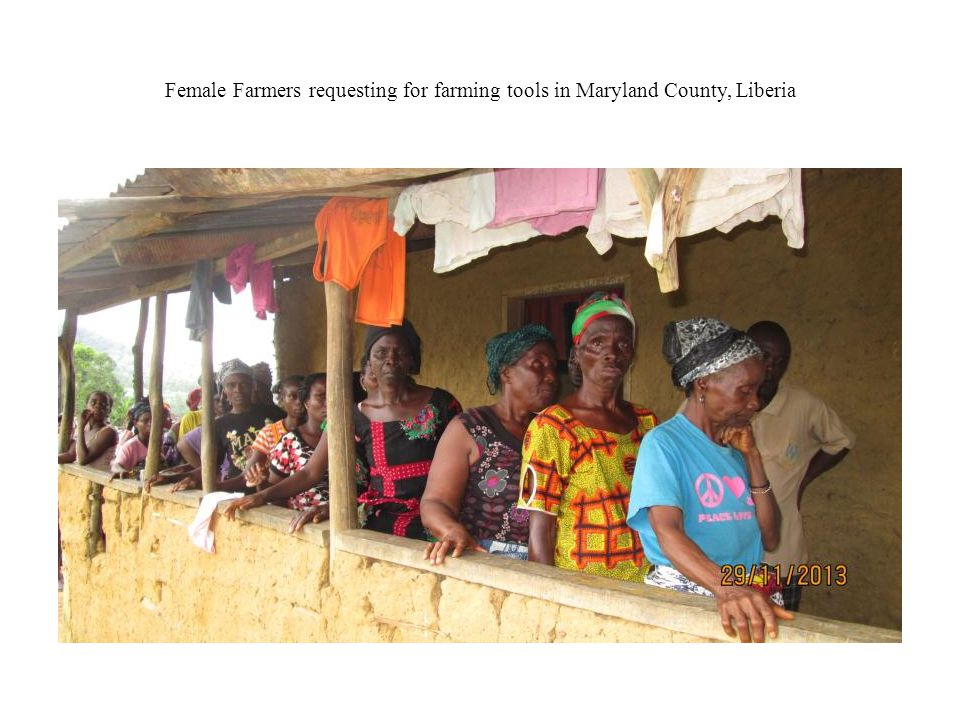 Female Farmers requesting for farming tools in Maryland County, Liberia