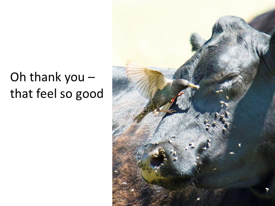 Oh thank you – that feel so good