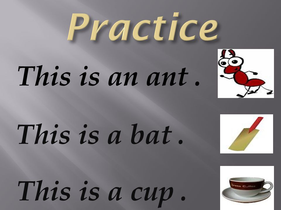 This is an ant. This is a bat. This is a cup.