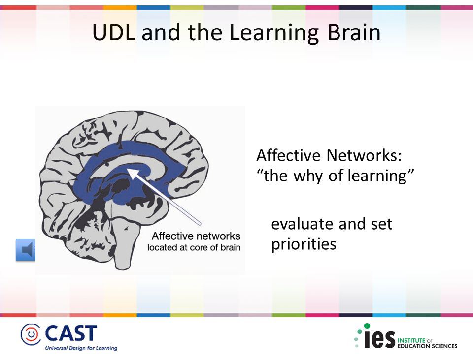"Affective Networks: ""the why of learning"" evaluate and set priorities UDL and the Learning Brain"