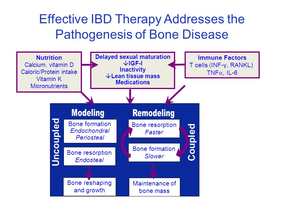 Effective IBD Therapy Addresses the Pathogenesis of Bone Disease Bone resorption Faster Bone formation Slower Maintenance of bone mass Bone formation Endochondral Periosteal Bone resorption Endosteal Bone reshaping and growth Coupled Uncoupled Immune Factors T cells (INF-γ, RANKL) TNF , IL-6 Nutrition Calcium, vitamin D Caloric/Protein intake Vitamin K Micronutrients Delayed sexual maturation  IGF-I Inactivity  Lean tissue mass Medications Sylvester, Inflamm Bowel Dis 2005; 11:1020-3