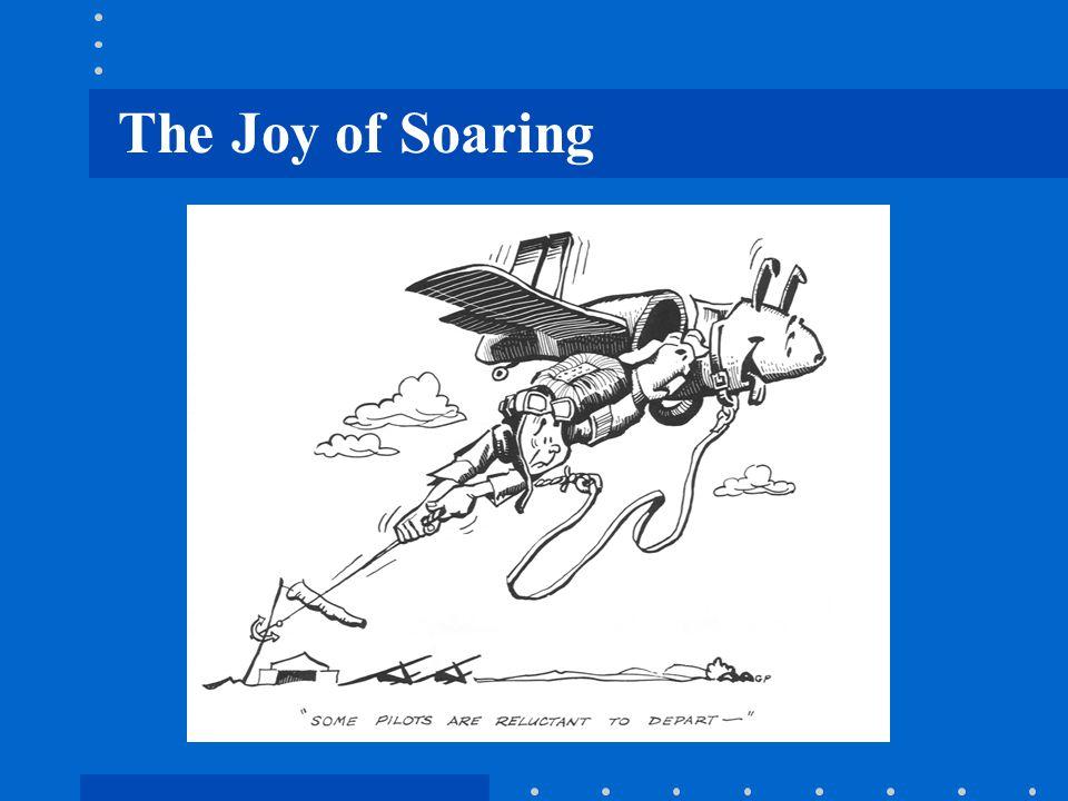 The Joy of Soaring