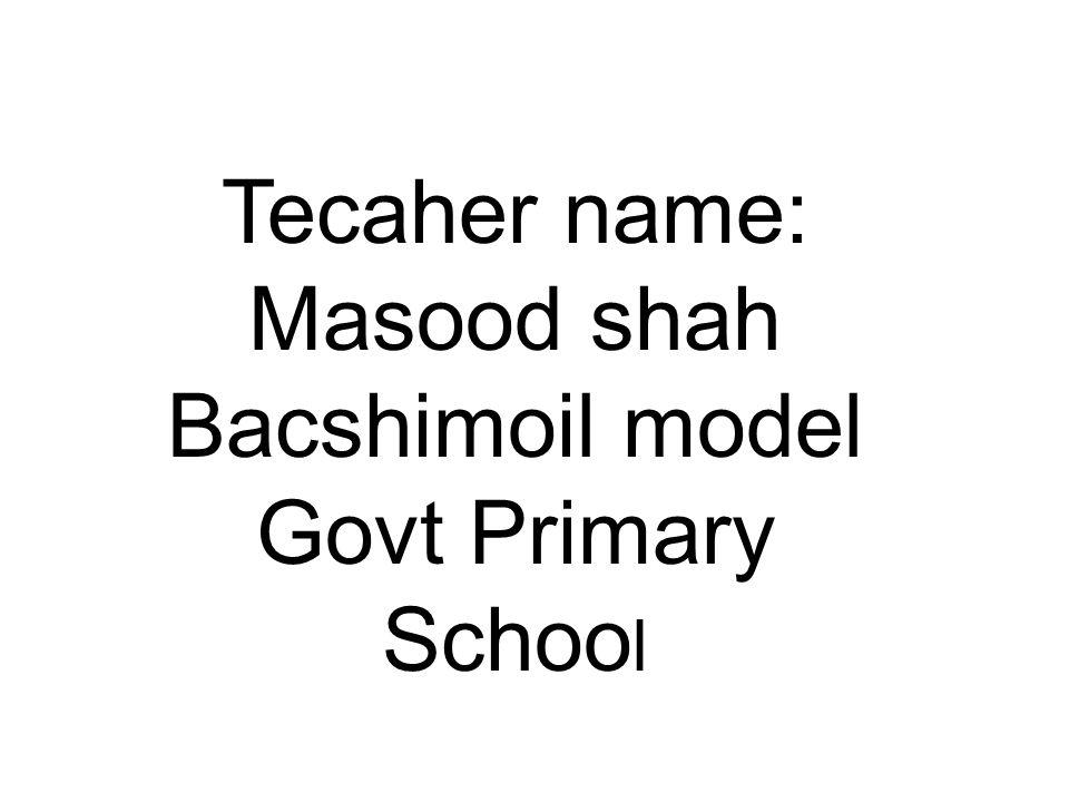 Tecaher name: Masood shah Bacshimoil model Govt Primary Schoo l