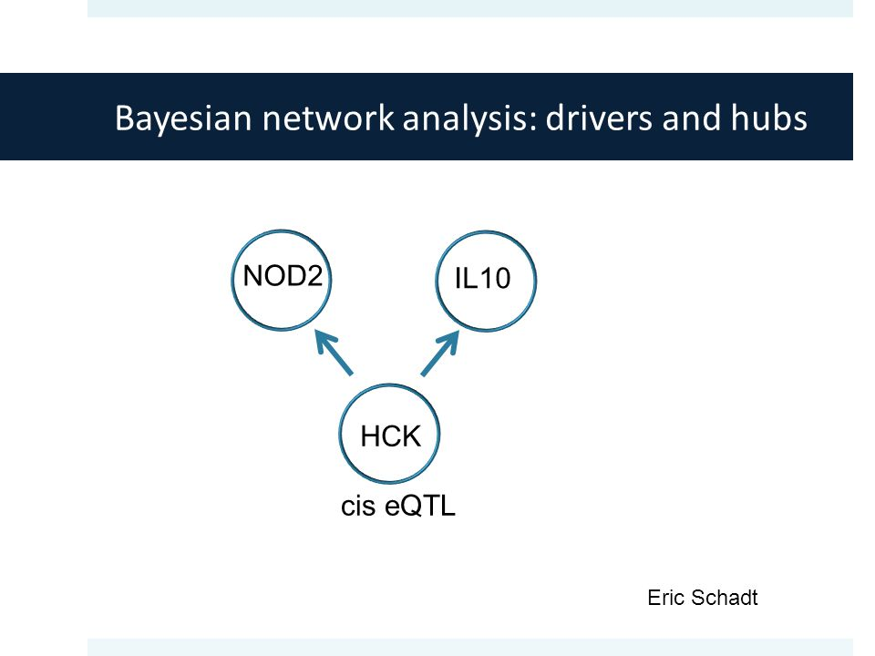 Bayesian network analysis: drivers and hubs cis eQTL HCK IL10 NOD2 Eric Schadt