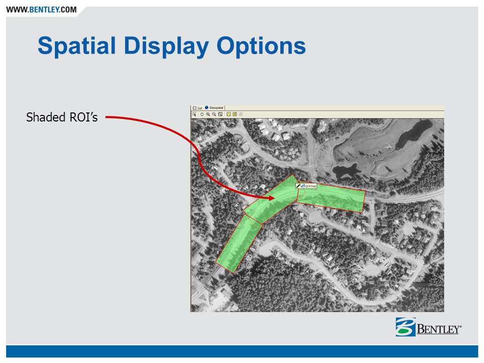 Spatial Display Options Shaded ROI's
