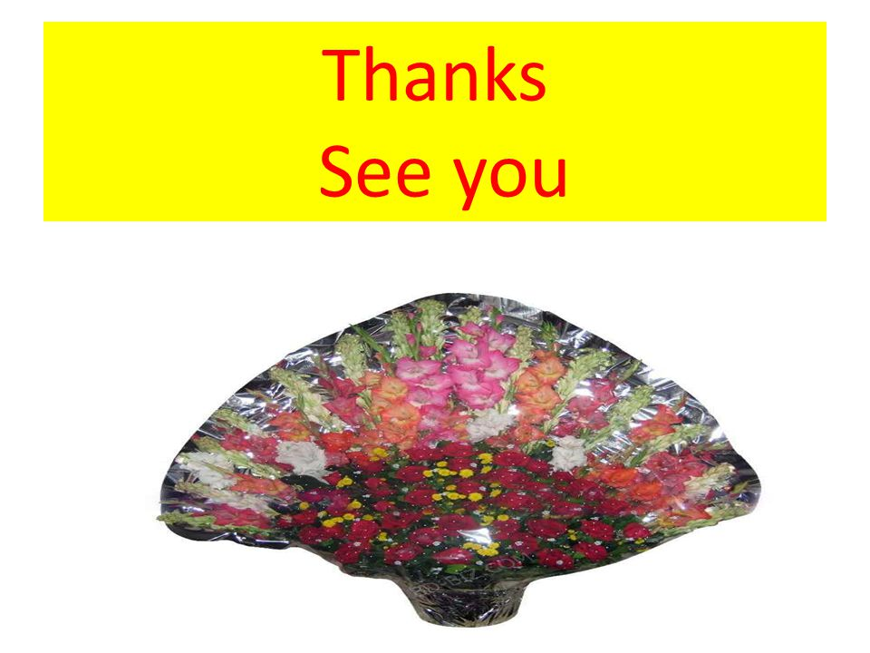 Thanks See you