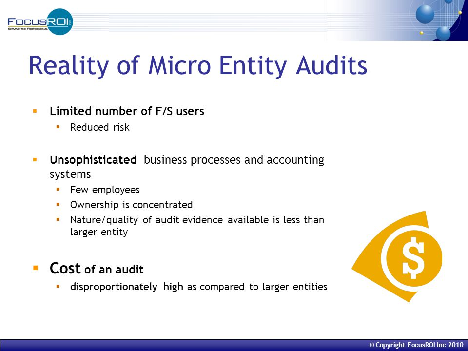 © Copyright FocusROI Inc 2010 Reality of Micro Entity Audits  Limited number of F/S users  Reduced risk  Unsophisticated business processes and accounting systems  Few employees  Ownership is concentrated  Nature/quality of audit evidence available is less than larger entity  Cost of an audit  disproportionately high as compared to larger entities