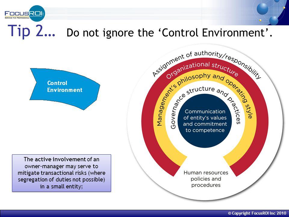 © Copyright FocusROI Inc 2010 Tip 2… Do not ignore the 'Control Environment'.