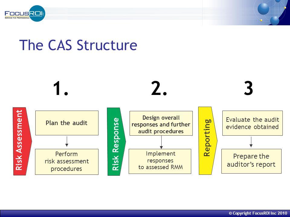 © Copyright FocusROI Inc 2010 The CAS Structure 1. 2. 3