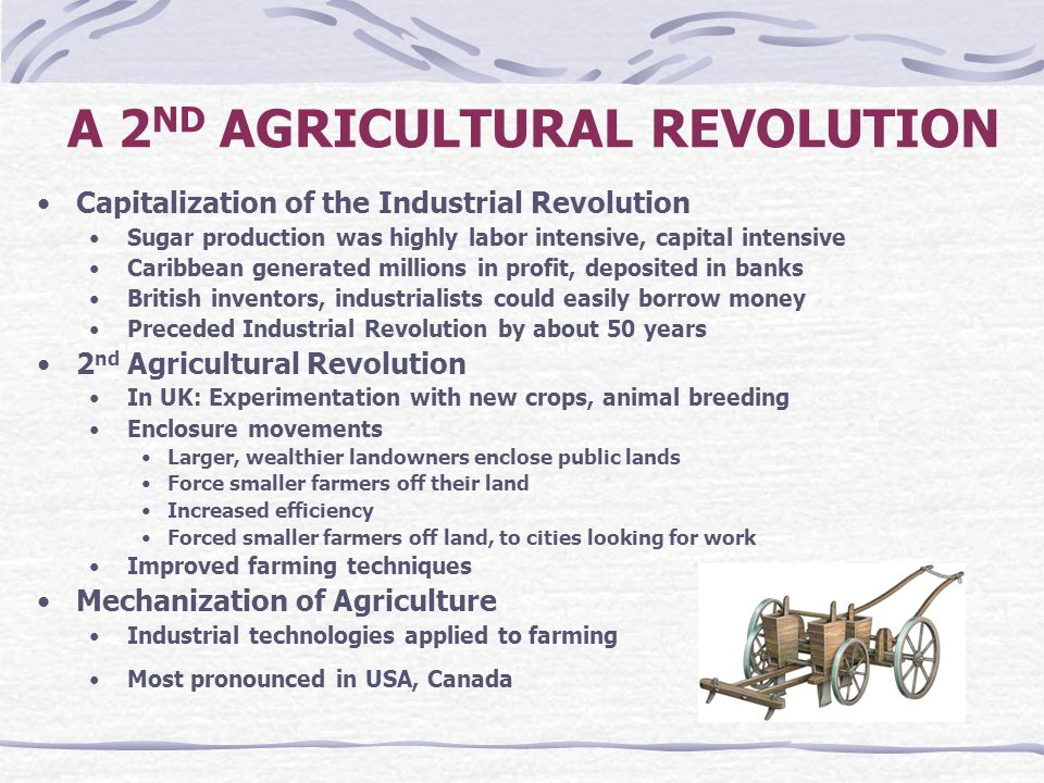 A 2 ND AGRICULTURAL REVOLUTION Capitalization of the Industrial Revolution Sugar production was highly labor intensive, capital intensive Caribbean ge