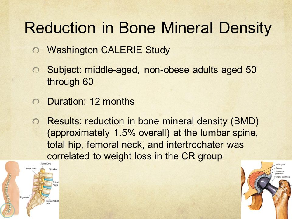 Reduction in Bone Mineral Density Washington CALERIE Study Subject: middle-aged, non-obese adults aged 50 through 60 Duration: 12 months Results: redu