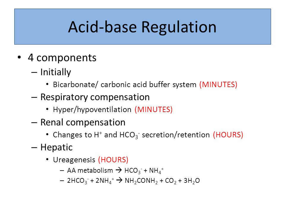 Acid-base Regulation 4 components – Initially Bicarbonate/ carbonic acid buffer system (MINUTES) – Respiratory compensation Hyper/hypoventilation (MIN