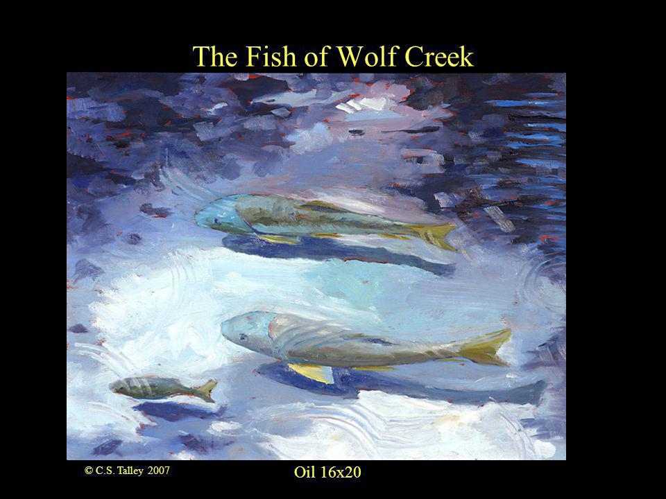 Oil 16x20 The Fish of Wolf Creek © C.S. Talley 2007