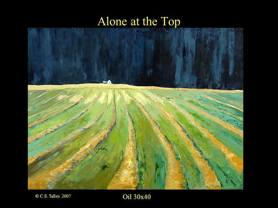 Oil 9x12 Alberta Rainstorm © C.S. Talley 2007