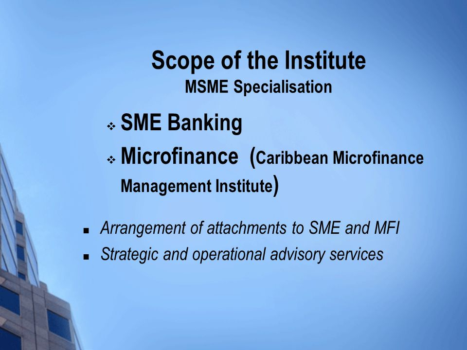 Scope of the Institute MSME Specialisation  SME Banking  Microfinance ( Caribbean Microfinance Management Institute ) Arrangement of attachments to SME and MFI Strategic and operational advisory services