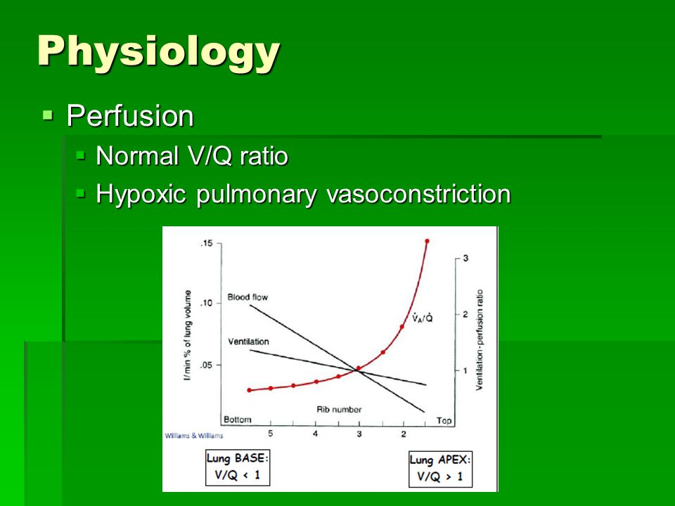 Physiology  Perfusion  Normal V/Q ratio  Hypoxic pulmonary vasoconstriction