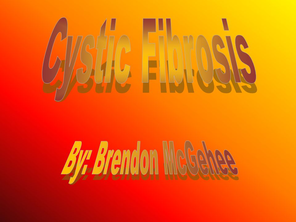 There are over 1,000 different mutations in the CFTR gene that have been identified in cystic fibrosis patients.