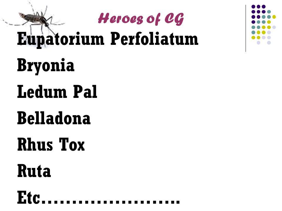 Heroes of CG Eupatorium Perfoliatum Bryonia Ledum Pal Belladona Rhus Tox Ruta Etc…………………..